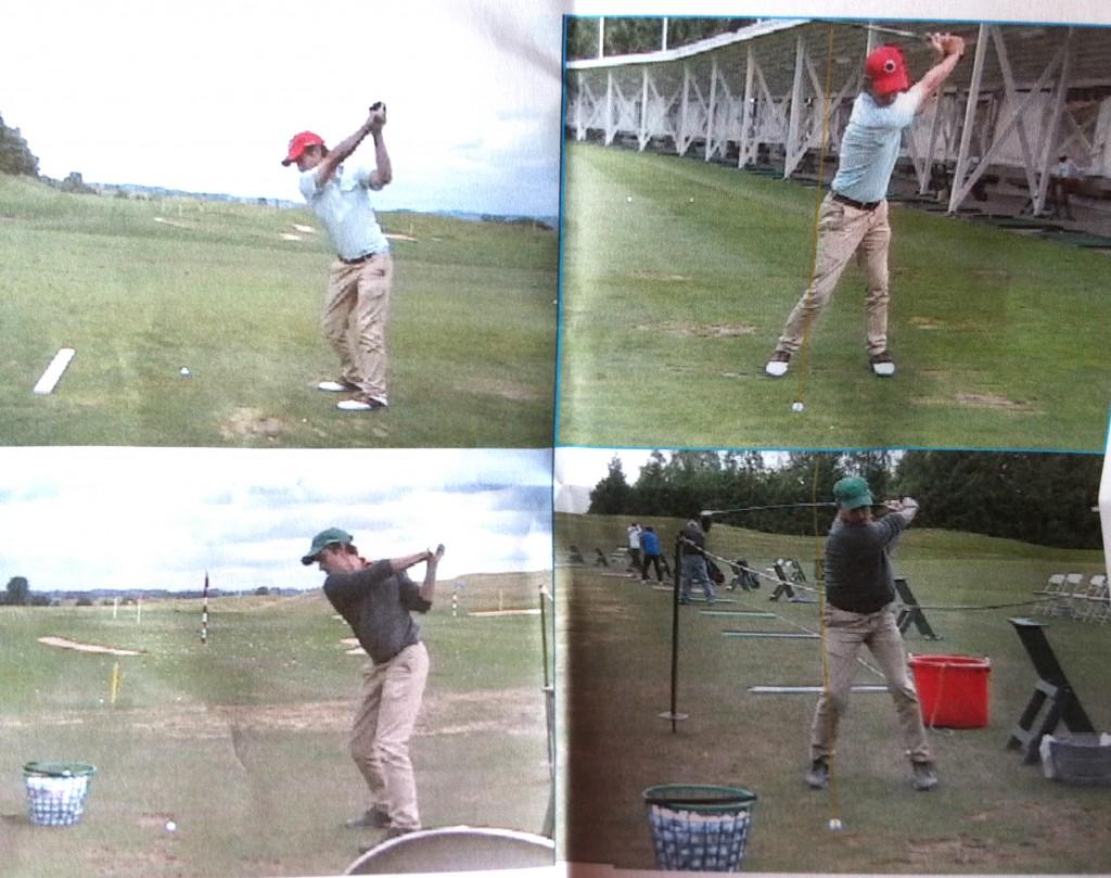 swing compare